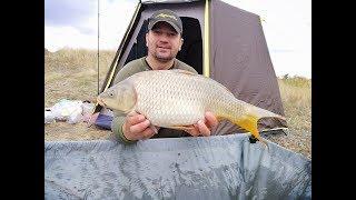 Рыбалка на карпа в +4С в Сентябре! Ночь, костер и карпы!Терпение в рыбалке вознаграждается!