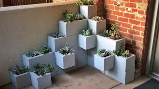 Cinder Blocks and Succulents