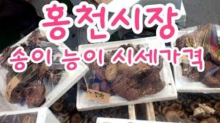 [홍천5일장] 송이 능이 시세가격  중앙시장 장날 1일…