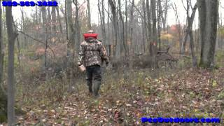 WCP Eliminator Raccoon Trap