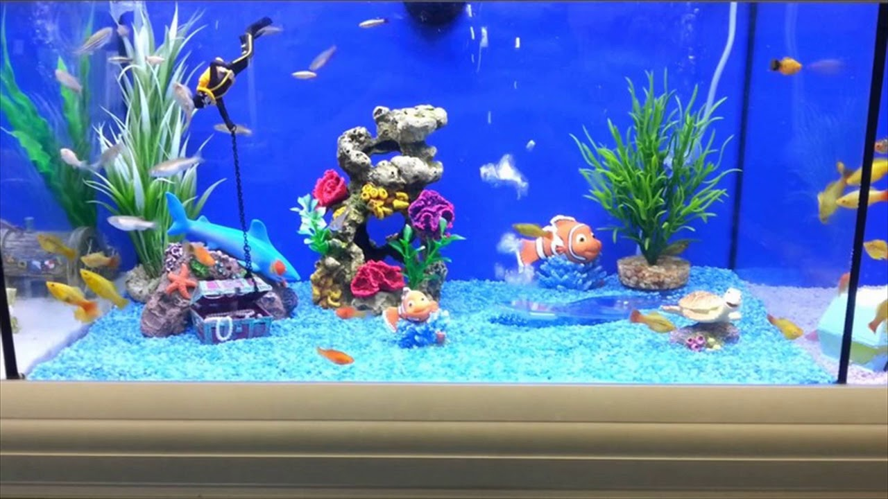 Fish Tank Decorating Ideas