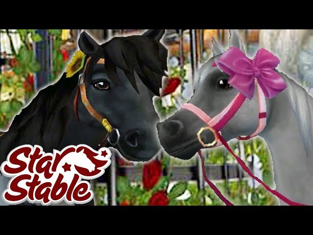 5 Different Star Stable Looks | Star Stable Online