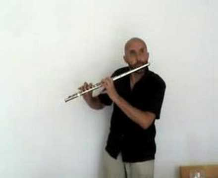 Puistossa flute beatboxing youtube for Housse flute traversiere