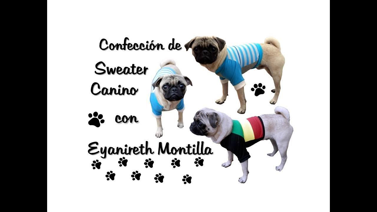 Aprende a confeccionar un Sweater para perro. - YouTube