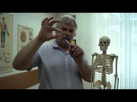 Может ли при гайморите болеть затылок