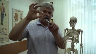 видео Болит голова и лоб при насморке, простуде: что делать
