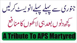 Seasonal Investment Plan For Investors | A Tribute to APS Martyred | Business School