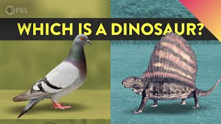 What Is A Dinosaur And What Isn't?