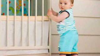 Your Baby's Major Milestones (Baby Health Guru)