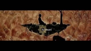 KUTLU DOĞUM 2017 DİYANET SİNEVİZYON Zile Müftülüğü 2017 Video