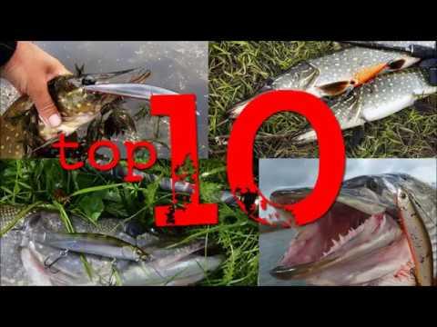 видео: Топ 10 воблеров на щуку. Лучшие воблеры для ловли щуки твичингом