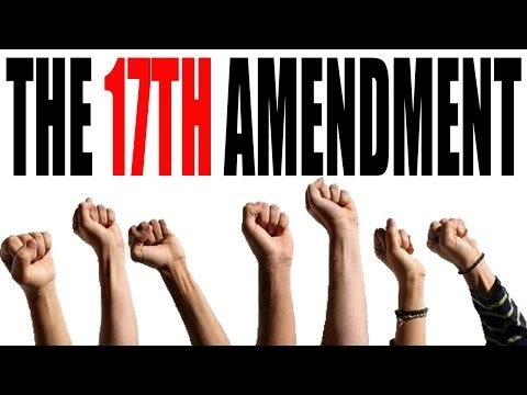 The 17th Amendment Explained: The Constitution for Dummies Series