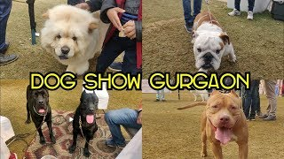 Dog Show Gurgaon 2019 || KENNEL CLUB OF INDIA ||GURUGRAM KENNEL CLUB