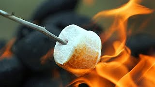 How to roast the perfect marshmallow