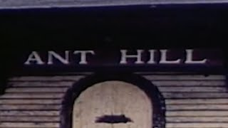 Ant Hill - A Geogaddi Film