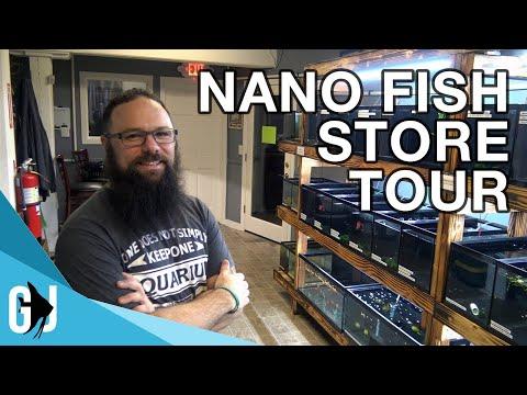 #570: THE NANO TANK FISH STORE TOUR - Update Monday