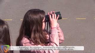 RÉTROSPECTIVE 2017 - ENVIRONNEMENT - AVALLON VISION