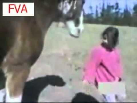 Krysti Lynn Riding a HorseKaynak: YouTube · Süre: 1 dakika5 saniye