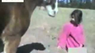 Video Girl vs horse download MP3, 3GP, MP4, WEBM, AVI, FLV Agustus 2018
