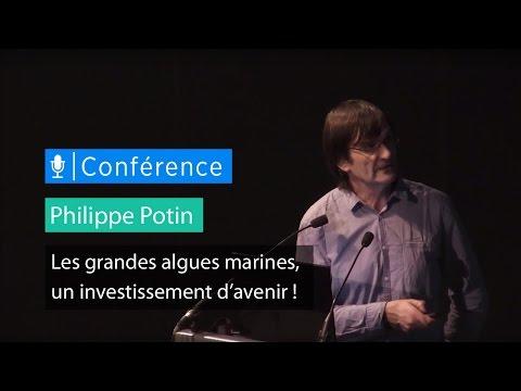 Les grandes algues marines, un investissement d'avenir ! - Conférence de Philippe Potin