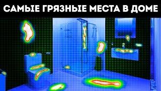 Самое грязное место в вашем доме? (Это не ванная!)