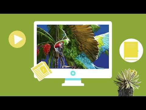 Contemplar, Comprender, Conservar: video animado