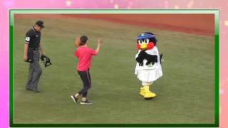 大女優・高島礼子 始球式...ヤクルト阪神