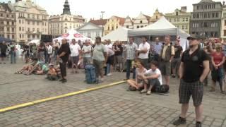 Plzeň v kostce (4.8.-10.8.2014)