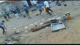 News and CURRENT situation in Ethiopian Somali Regional State