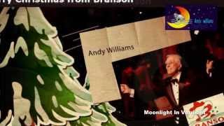 andy williams  Christmas With Andy Williams   Moonlight In Vermont