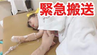 【救急搬送】2歳の娘が、救急車で運ばれる...診断の結果、精密検査をすることになりました。