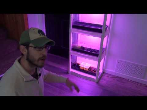 DIY LED Grow Shelf - Year Round Indoor Gardening and Springtime Seed Starting