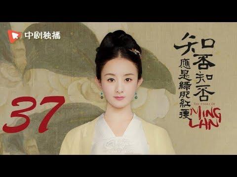 知否知否应是绿肥红瘦【未删减】37(赵丽颖、冯绍峰、朱一龙 领衔主演)