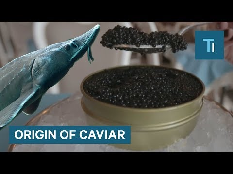 Why Is Caviar So Expensive?