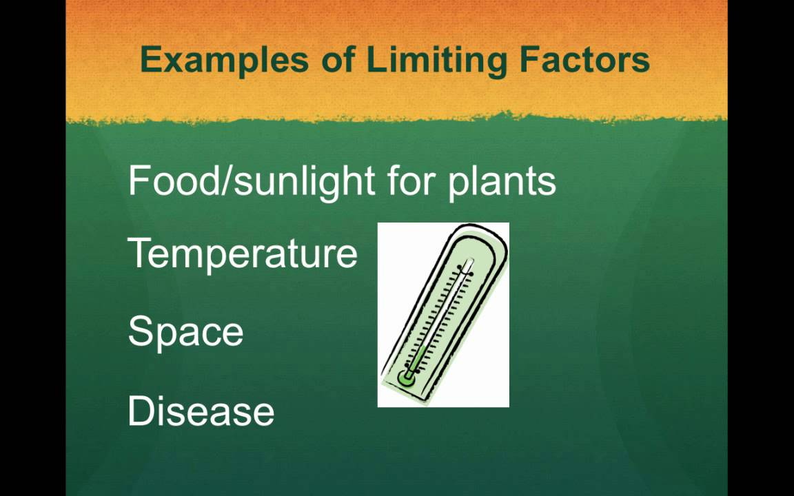 Limiting Factors And Carrying Capacity Youtube