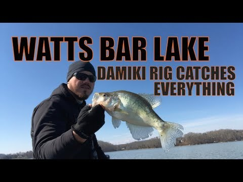 WATTS BAR LAKE: Damiki Rig Catches EVERYTHING