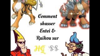 [TUTO 1/2] Comment shasser Entei & Raikou sur Heart Gold/Soul Silver