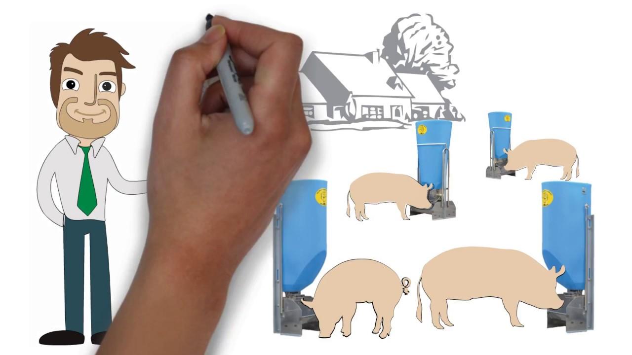 Кормушки для свиней пластиковые на откорм - YouTube