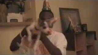 Its my dawg Birthday (Lost Video) / Commerical for The Answer
