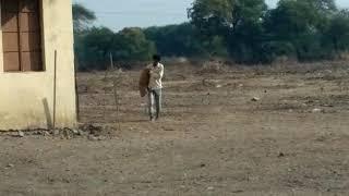 Dog gaurd training. Dog is attacking stranger. Trainer Prashant Chare(9552781420)