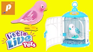 Распаковка и обзор  - Интерактивная игрушка Птичка little live pets