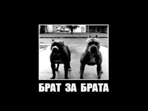 ULICHNI SRBSKI REP ZA MOTIVACIJU 1 / Serbian rap