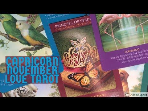 CAPRICORN NOVEMBER 2017 | ~PRE-DESTINED PASSIONATE NEW BEGINNING~ | LOVE TAROT READING