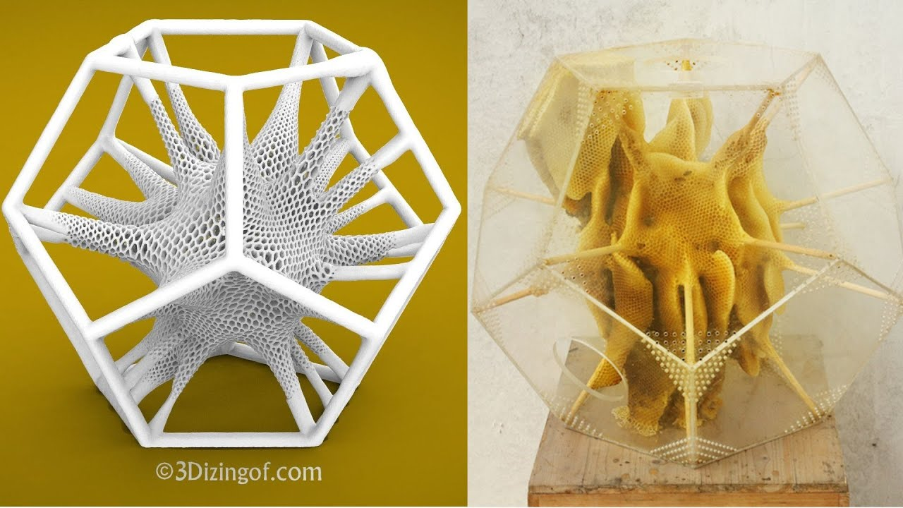 Dizingof designs - 3D printing mimicking Nature - BeeHive - Math Art ...