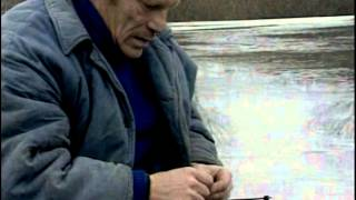 видео Рыбалка на Ахтубе - приманки для ловли судака в Трехречье