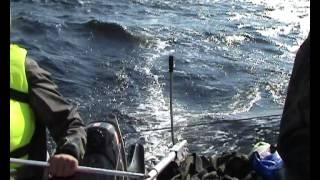 На парусном катамаране по Белому морю