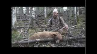 Troy Takes A Beautiful Blonde Colored Black Bear Hunting Alberta Canada Garrett Bros. Outfitting