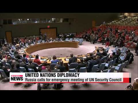 Russia calls for Ukraine ceasefire at UN Security Council
