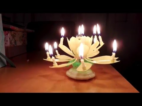 Crazy Chinese Flowering Birthday Music Candle Indoor Firework Plays