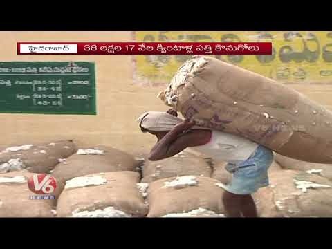 Election Effect On Cotton Crop: Farmers Facing Problems With Minimum Support Price | V6 News